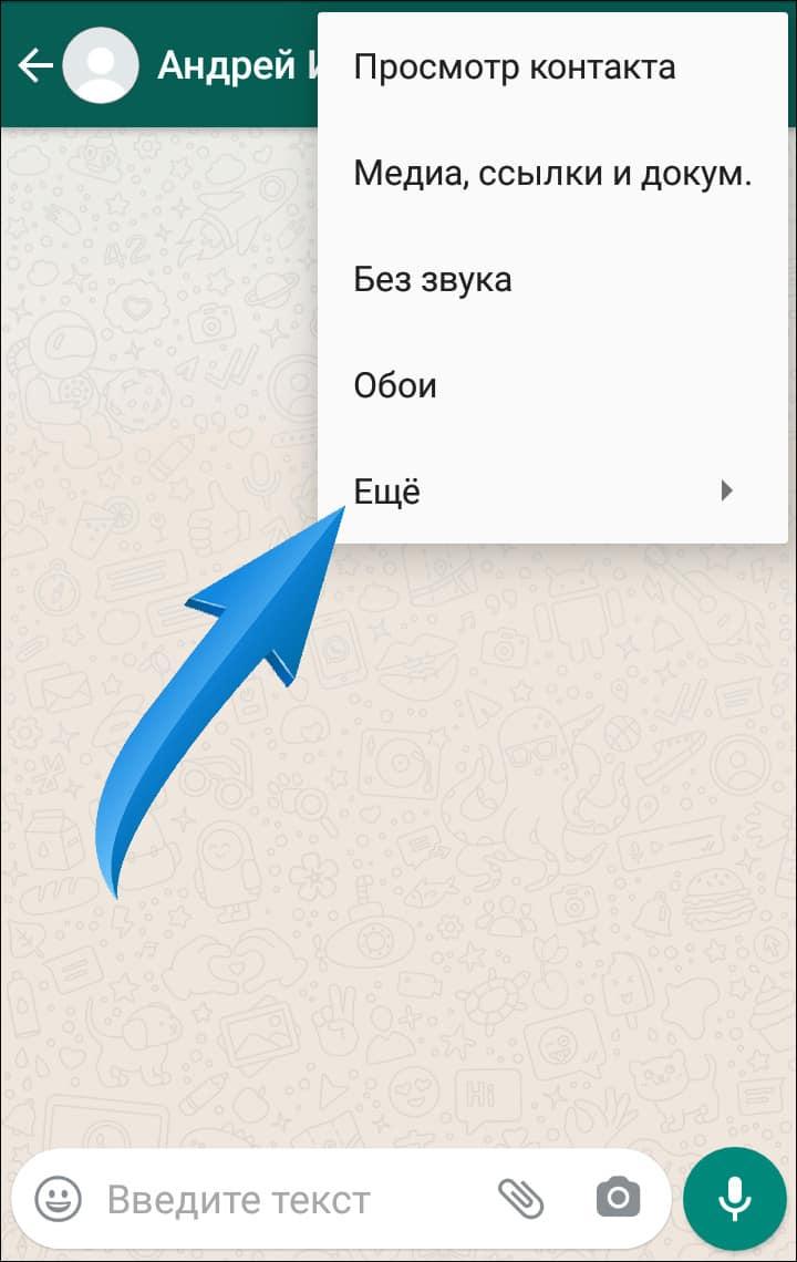раздел еще в меню whatsapp