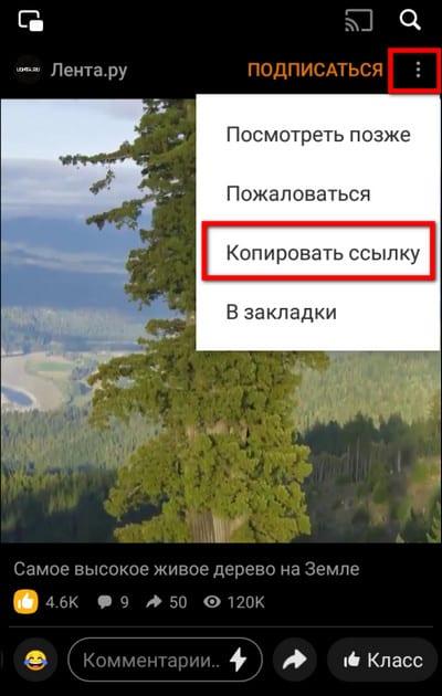 копировать ссылку в Одноклассниках на Андроид