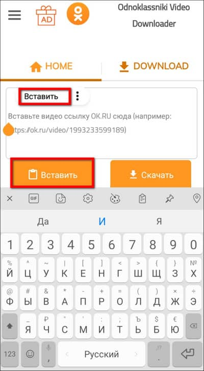 вставка ссылки в Odnoklassniki Video Downloader