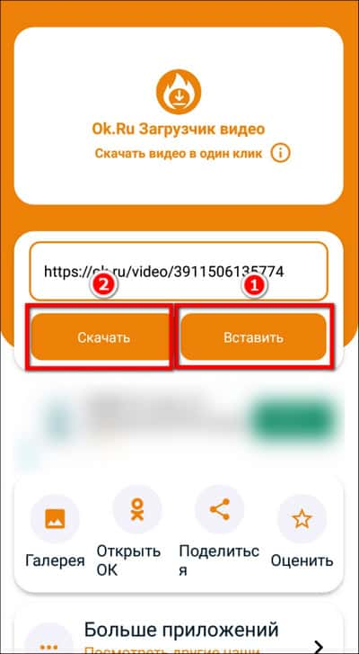 вставка ссылки в Ok.Ru Downloader
