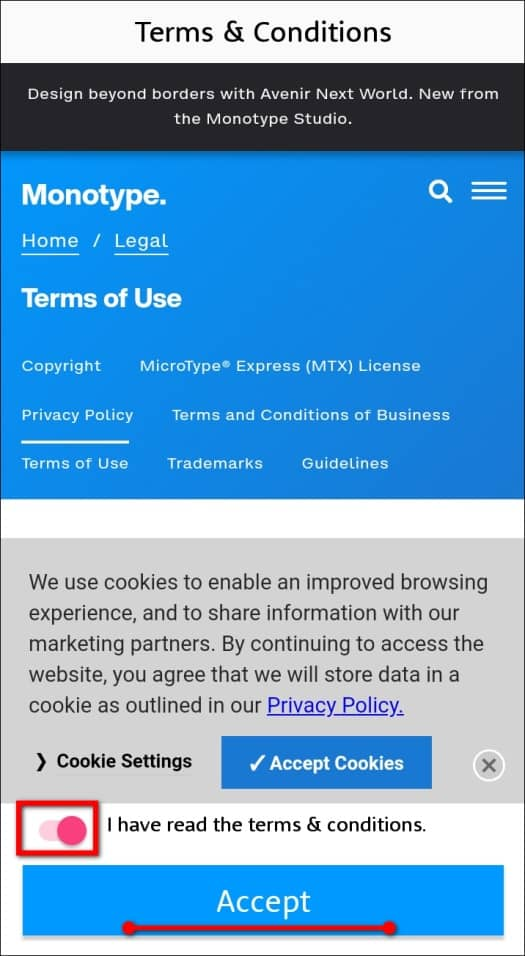 тумблер I have read the terms and conditions