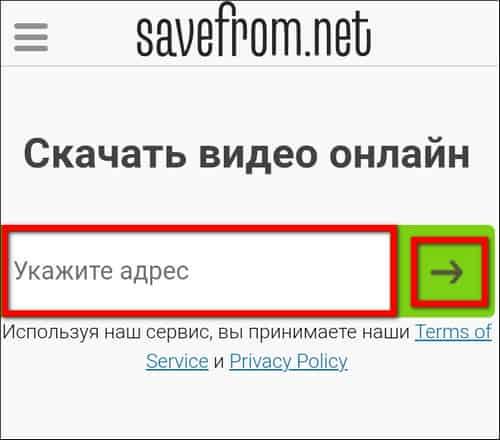 вставка ссыкли в SaveFrom.net